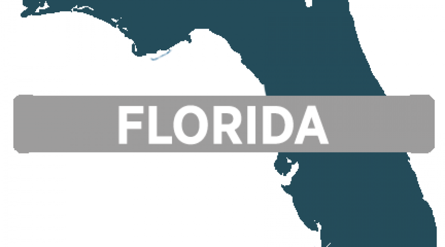 Florida Polaris slingshot rentals